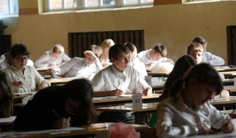 Riso dla szkół